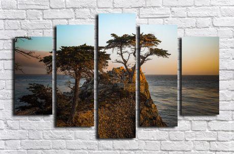 Модульная картина Пейзажи и природа 96