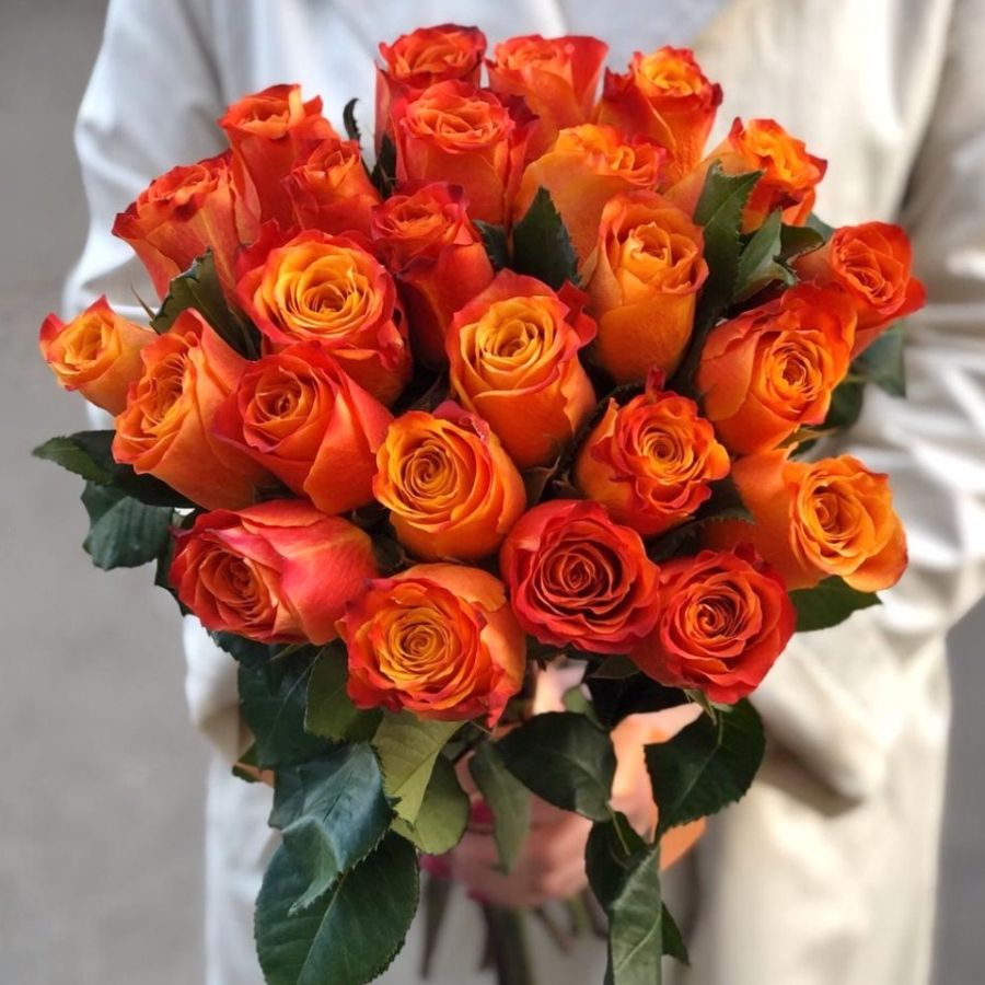 25 оранжевых роз 50 см