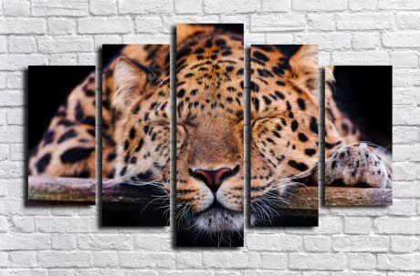 Модульная картина Животные 42