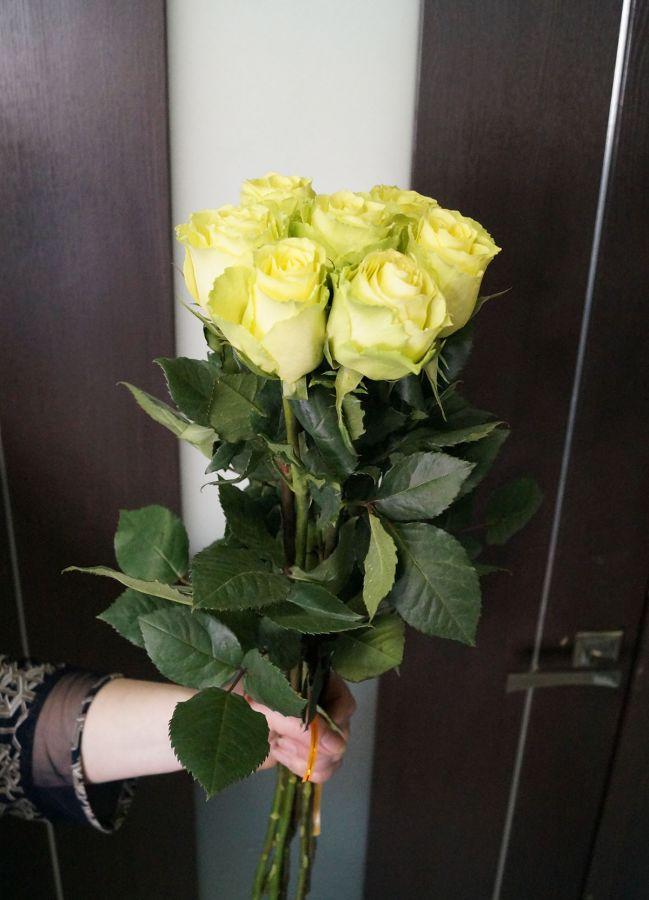 7 роз - Лимбо (60 см)