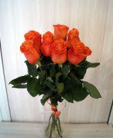 7 роз - Оранж краш (60 см)