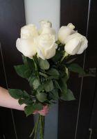7 роз - Проуд (60 см)