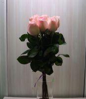 7 роз - София (60 см)