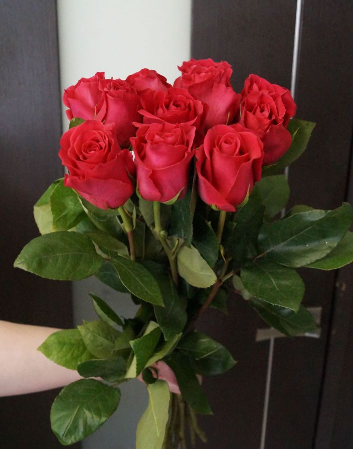 11 роз - Пинк флойд (60 см)