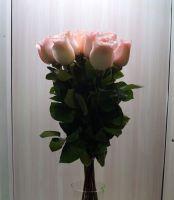 11 роз - София (60 см)