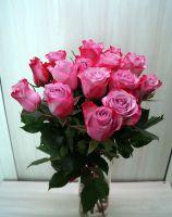 15 роз - Дип Пурпл (60 см)