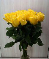 15 роз - Мохана (60 см)