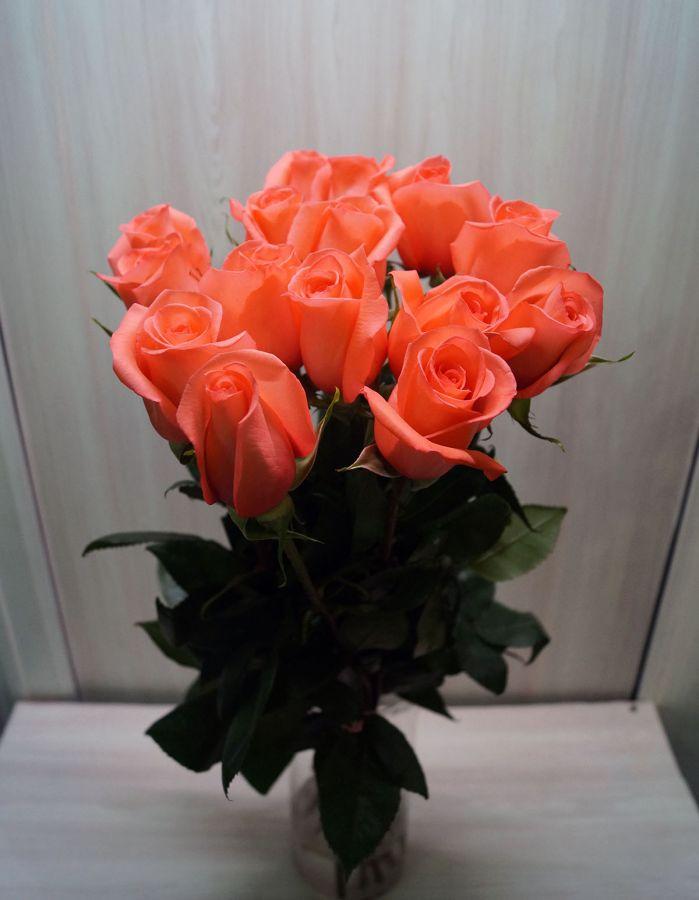 15 роз - Мувистар (60 см)