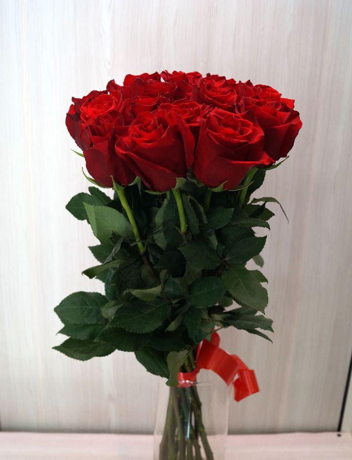 15 роз - Эксплорер (60 см)