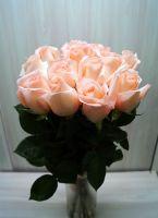 15 роз - Ангажимент (60 см)