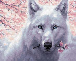 Картина по номерам «Белый волк» 40x50 см