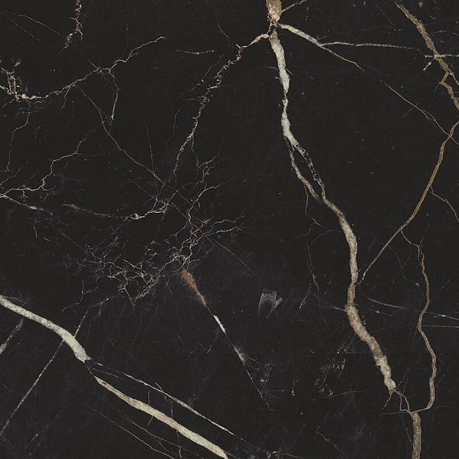 17052 | Фрагонар чёрный
