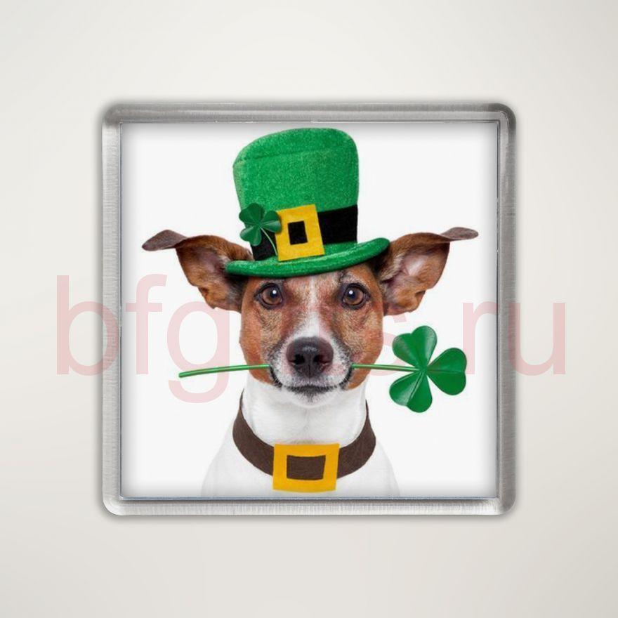 Магнит Ирландский на счастье