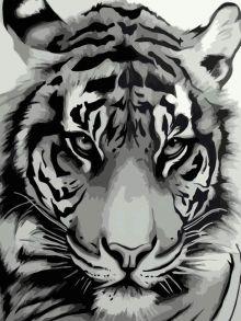 Картина по номерам «Мудрый взгляд» 40x50 см