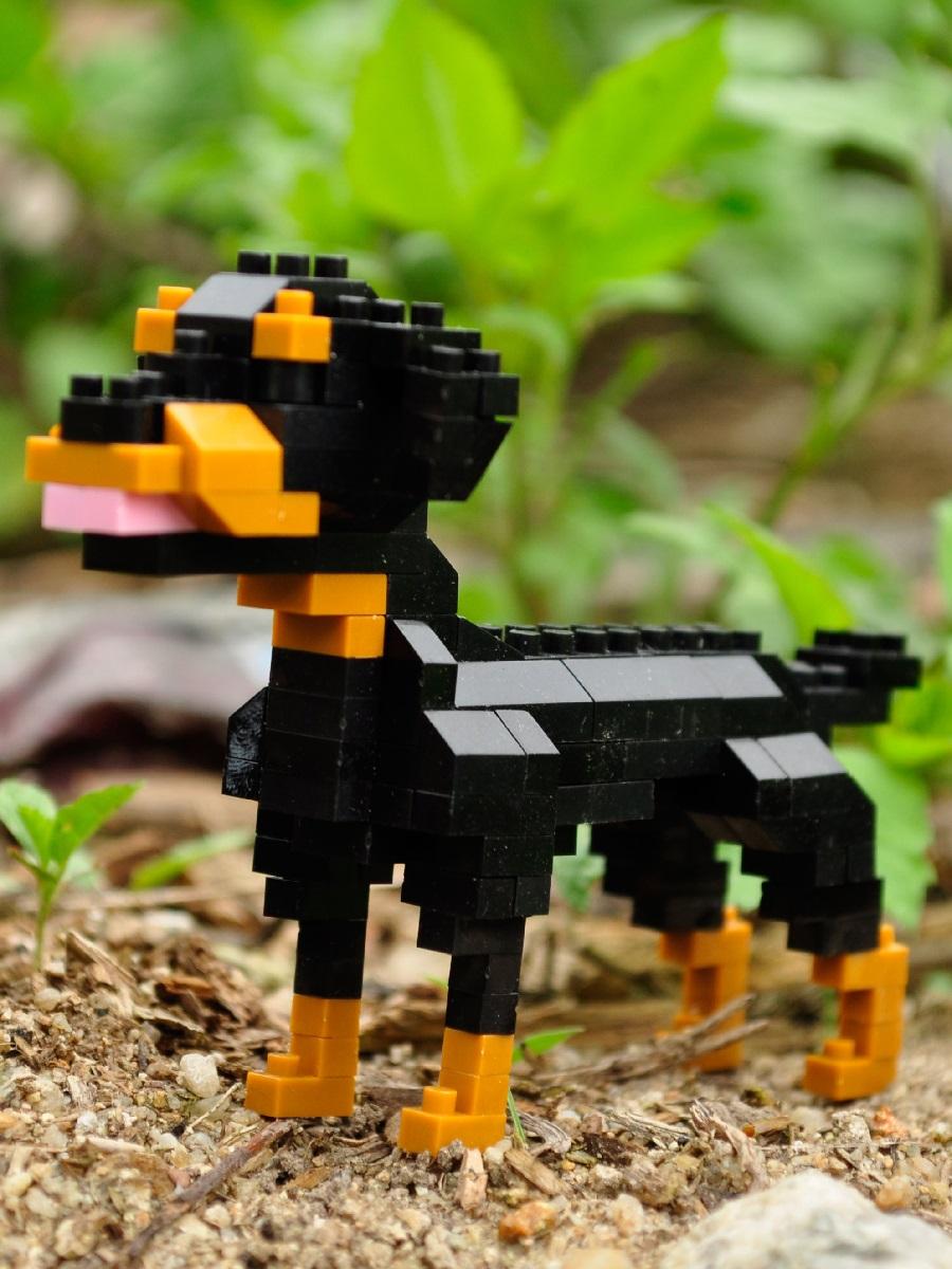Конструктор Wisehawk & LNO Ротвейлер 141 деталь NO. C12 Rottweiler Gift Series