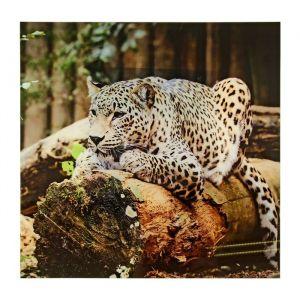 """Картина на стекле """"Леопард"""""""