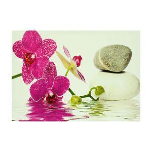 """Картина на подрамнике """"Орхидея у воды и камней"""""""