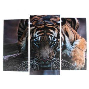 """Модульная картина """"Тигровый взгляд""""  (2-25х52; 1-30х60) 60х80 см   3981650"""