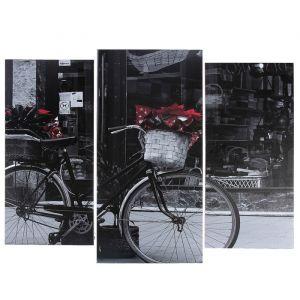 "Модульная картина ""Чёрно-белый велосипед""  (2-25х52; 1-30х60) 60х80 см   3981633"