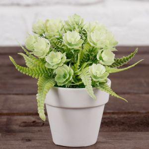 """Бонсай в горшке """"Цветы с листьями папоротника"""" 7*11 см, микс   4560010"""