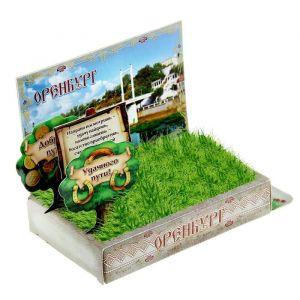 Растущая травка в открытке «Оренбург»