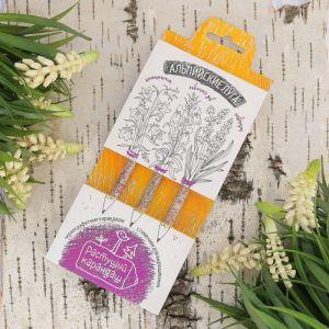 """Растущие карандаши """"Альпийские луга"""" набор 3 шт. черные 2703605"""