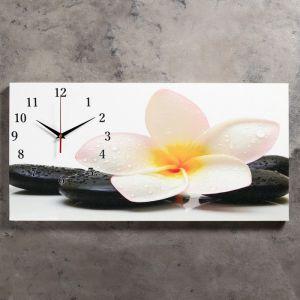 """Часы настенные, серия: Цветы, на холсте """"Белый цветок на камнях"""", 40х76  см, микс 2045173"""