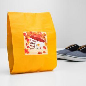 """Мешок для обуви """"В этот осенний день""""  4452168"""