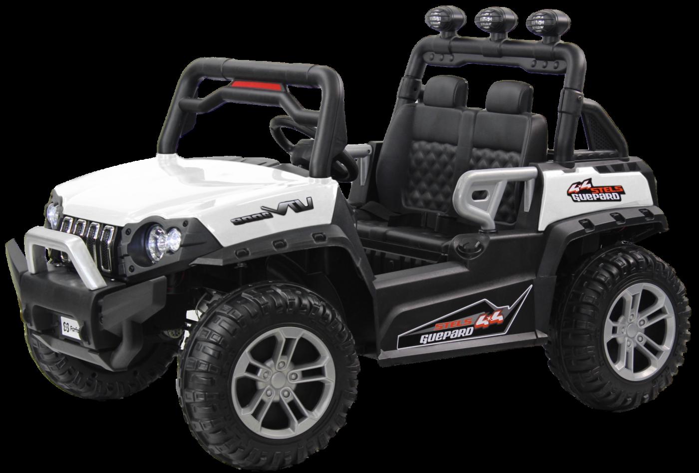 Детский электромобиль (2020) DLS02 (12V) Белый