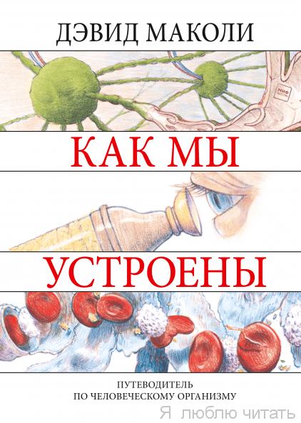 Как мы устроены Путеводитель по человеческому организму