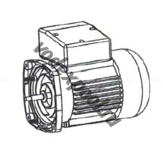 Двигатель к насосу SS020 (220В) Emaux 89022109