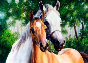 Алмазная мозаика «Две лошади» 30x40 см