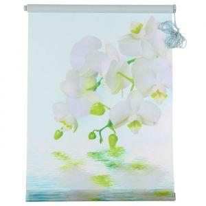 """Штора-ролет 60х160 см """"Орхидея"""", цвет голубой"""