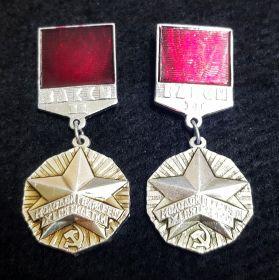 Значок ВЛКСМ - Молодой Гвардеец 11 пятилетки 2 степень - 2шт разное покрытие