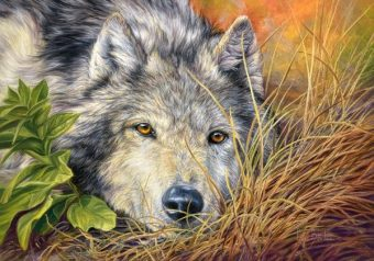 Пазлы 500 Волчья грусть