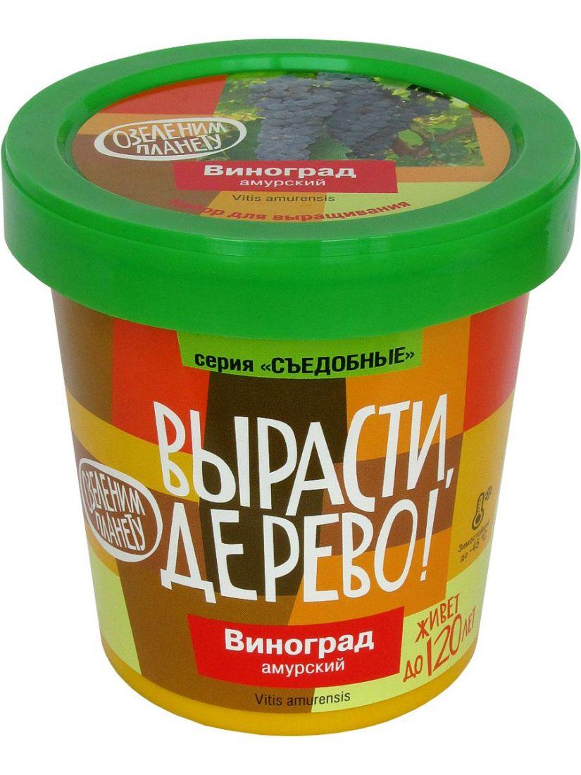 Набор для выращивания ВЫРАСТИ ДЕРЕВО! zk-057 Виноград Амурский