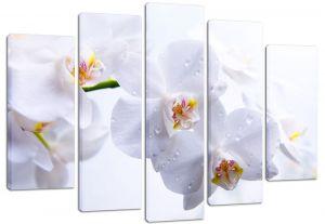 Модульная картина Белые орхидеи
