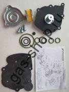 Ремкомплект редуктора TOMASETTO AT09  NORDIC c фильтром - оригинал
