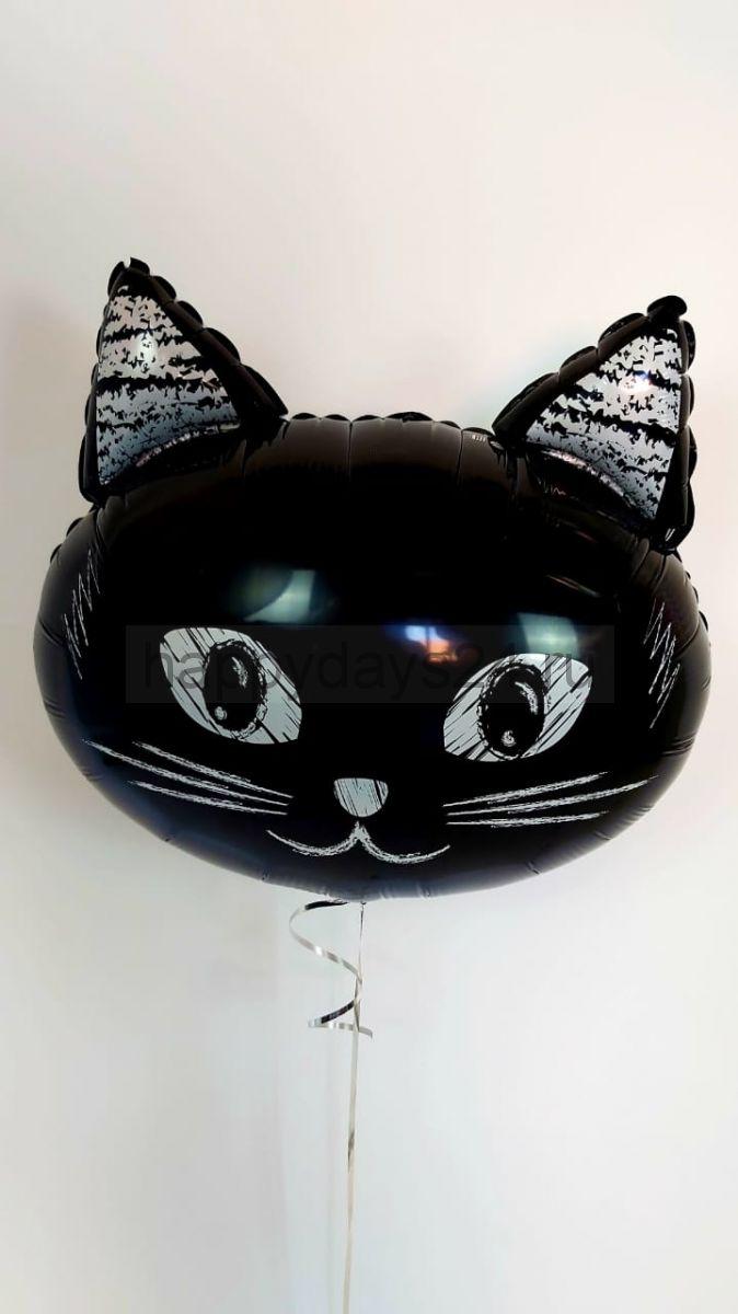 Котик. Шар двусторонний