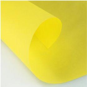 Калька Argio Wiggins для карандаша и туши Curious Translucents цвет жёлтый 200г 70х100см 5листов