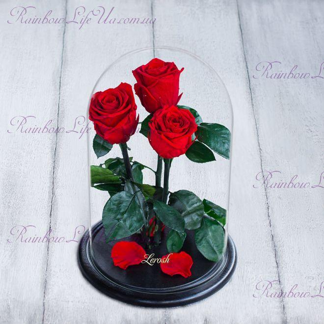 """Букет красных роз в колбе 33 см """"Grand"""""""
