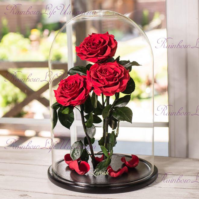 """Букет красных роз в колбе 43 см """"Elite"""""""