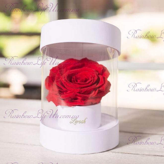 "Бутон розы в коробке бокс ""Premium"""