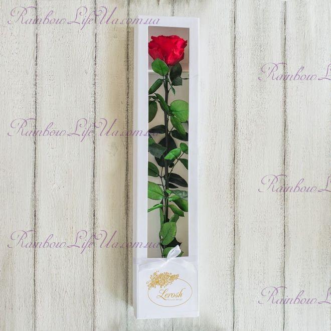 """Долгосвежая роза в коробке """"Premium"""""""