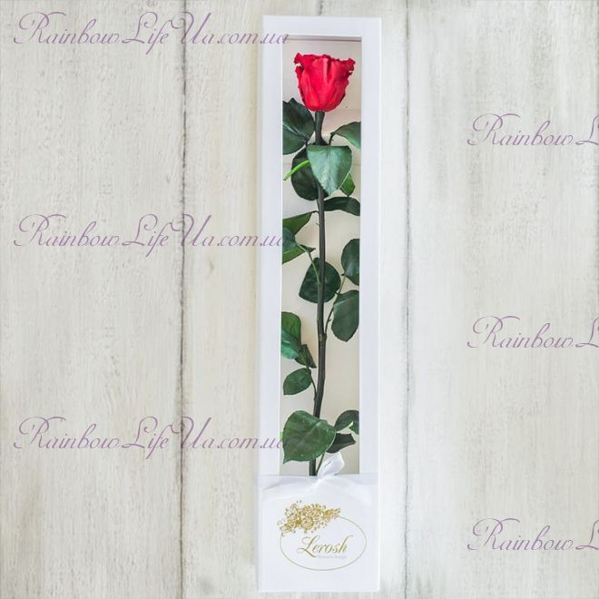 """Долгосвежая роза в коробке """"Standart"""""""