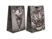 Пакет подарочный крафт, 21*30*12 см, бумага, 2 дизайна