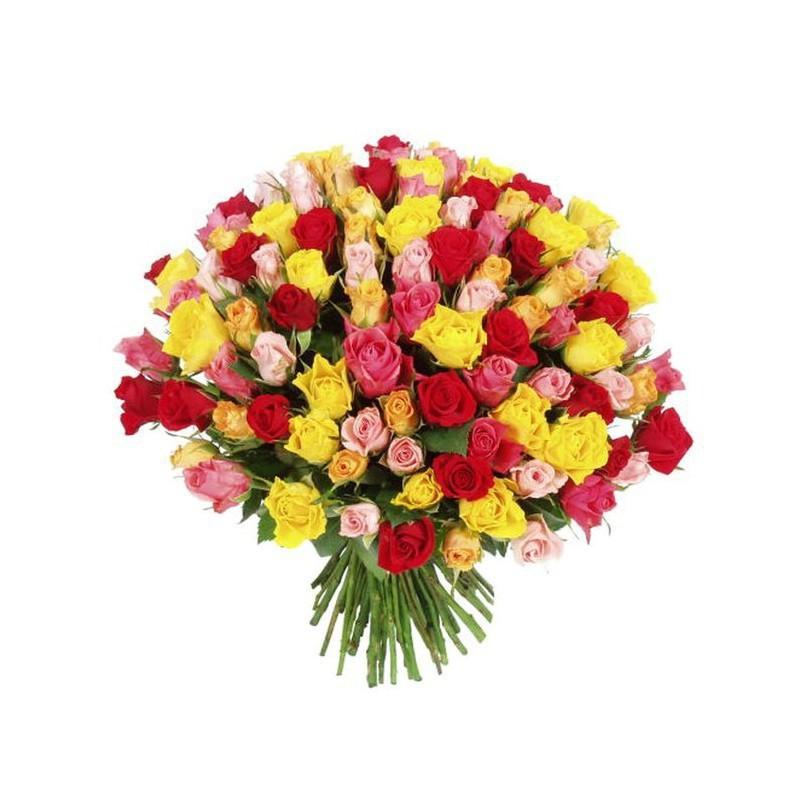 101 кенийская роза микс