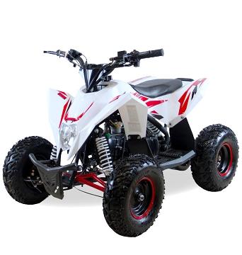 Детский квадроцикл бензиновый Motax Gekkon 70 cc
