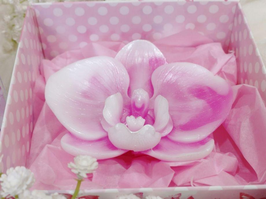 ~Орхидея большая~