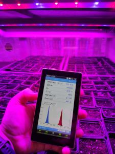 Фитолампа для растений линейная 20Вт LN-1 120 см